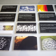 New Photodynamism Postcard Set